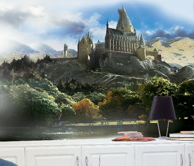 harry-potter-chair-rail-mural